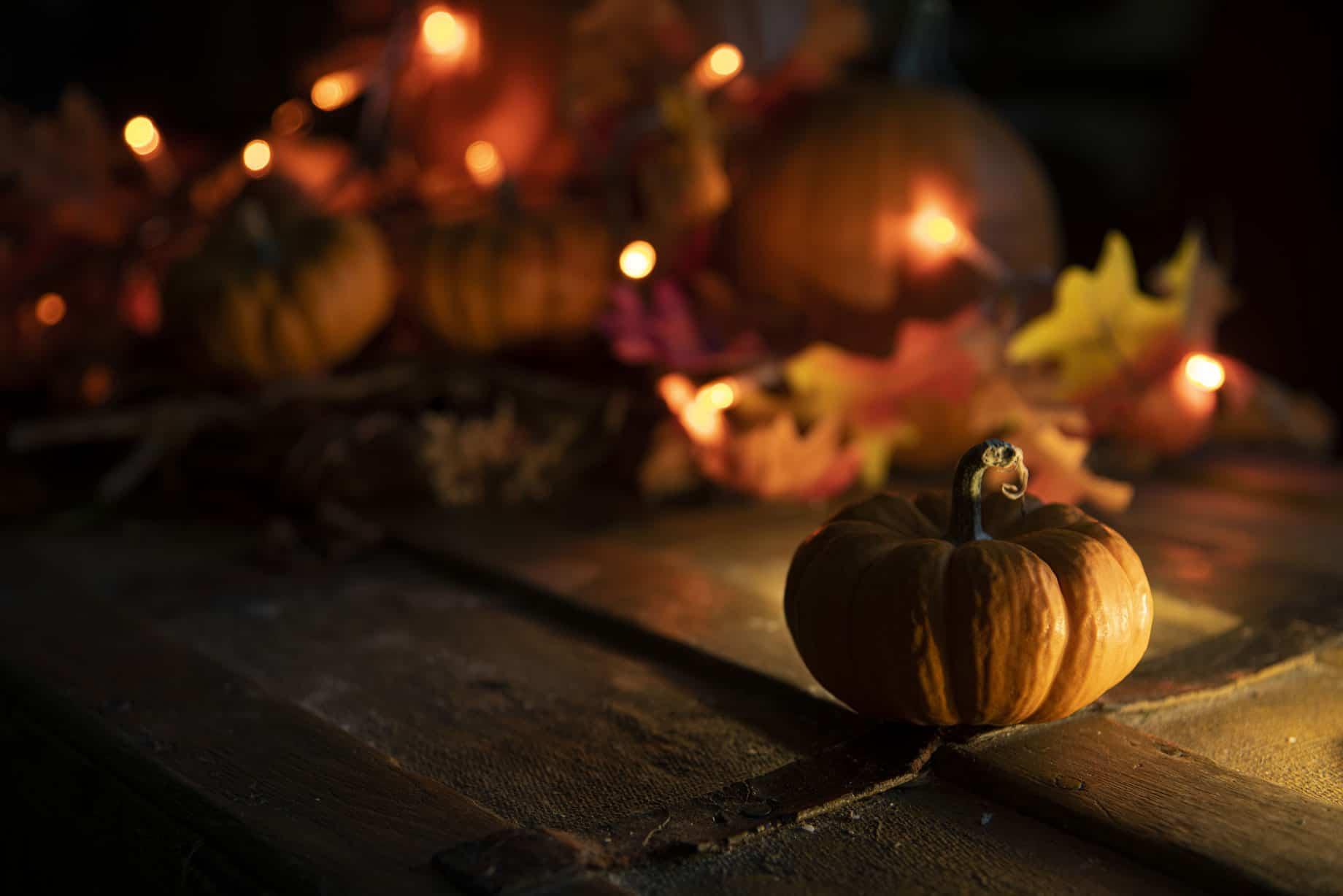 Halloween Sail